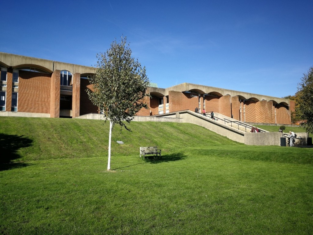 Sunny day, grassy hill, tree and library